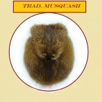 Trad. Musquash